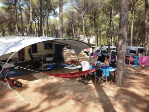 Camping Interpals